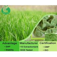 Wholesale Natural Barley Grass Powder from china suppliers