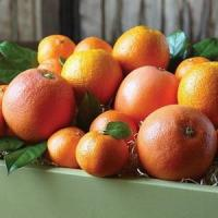 Wholesale CITRUS MEDLEY NO.38 deliver gift hamper to shenzhen from china suppliers