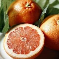 Wholesale SUGAR RED GRAPEFRUIT NO.35 deliver gift hamper to shenzhen from china suppliers