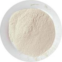 Wholesale dehydratedgarlicpowder from china suppliers
