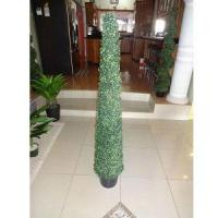 Wholesale Slim spiral Topiary from china suppliers