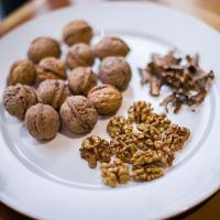 Wholesale Walnut in shell from china suppliers