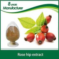 Factory wholesale high quality natural rose hip oil
