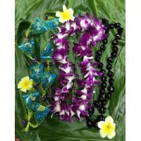Wholesale Best Selling Lei Graduation Package - Da Nutty Buddy from china suppliers