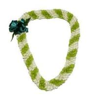 Fancy Spiral Orchid Lei (Green & White)