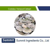 Wholesale Coriolus Versicol Extract,Polysaccharides 10%,Dried,Trametes versicolor from china suppliers