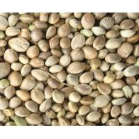 Wholesale hemp seed extract from china suppliers