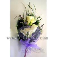 Wholesale 3 Pocket white flower Mary 3 Pocket white flower Mary from china suppliers