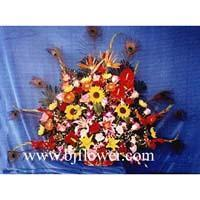 China Happy flowers, Thailand orchids, carnations Happy flowers, Thailand orchids, carnations wholesale