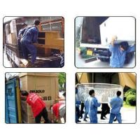 Buy cheap Family move 1 from wholesalers