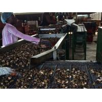 Wholesale Cashew Separator from china suppliers