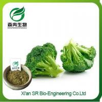 Wholesale Broccoli Powder, China Supplier Organic Broccoli Powder, High Quality Broccoli Seed Extract from china suppliers