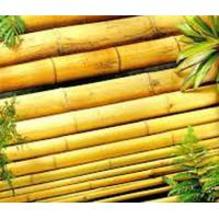 Bamboo poles to buy quality bamboo poles to buy for sale for Bamboo roofing materials
