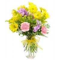 Wholesale Mother's Day Flowers Fields of Guernsey from china suppliers