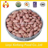 Wholesale best selling products red coral peanut peanut kernels 24/28 raw organic peanuts from china suppliers