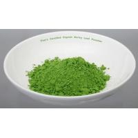 Wholesale Dried Barley Grass Powder from china suppliers