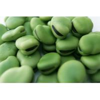 Wholesale Dried Broad Beans--Highland Food Group from china suppliers