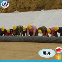 Wholesale High quality Tr-dimension composite drainage geonet from china suppliers