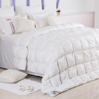 China Down Feather Duvet wholesale