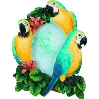 Bird Picture Frame - Macaw