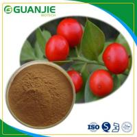 Wholesale Butcher's Broom P.E Ruscus Aculeatus Extract Hot Sale Ruscogenin Powder L Hot Sale And Sample Free from china suppliers