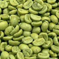 Wholesale Green Coffee Bean Extract Model: G1003 from china suppliers
