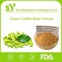 Wholesale Chlorogenic Acid Green Coffee Bean/Buy Best Natural Organic Green Coffee Seed Extract Powder Online from china suppliers