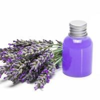 Wholesale Lavender oil from china suppliers