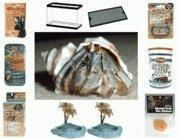 Wholesale Hermit Crab Starter Kit from china suppliers