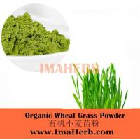 Wholesale Organic Wheat Grass Powder from china suppliers