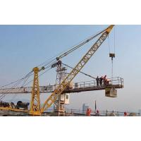 Wholesale Tower Crane WQ6 Derrick Crane from china suppliers