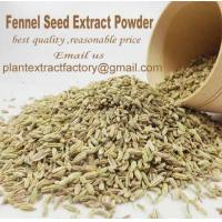 Wholesale Herb Extract Powder Fennel Seed Extract from china suppliers
