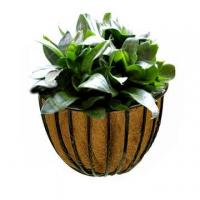 Wholesale Wall Hayracks Planter from china suppliers