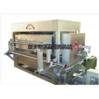 Wholesale Egg Tray Machine QS-3*4 Four rotary egg tray machine from china suppliers