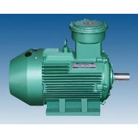 Safety three phase electric motors quality safety three for Protection of 3 phase induction motor