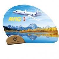Other Products Promotional Fan