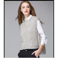 Latest Fashion Down Vest With Sweater 116