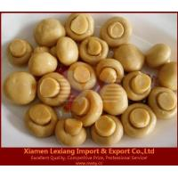 Wholesale canned edible fungus Product name:canned mushroom whole in brine from china suppliers
