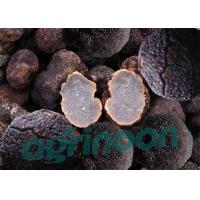 Wholesale Dried Truffle from china suppliers