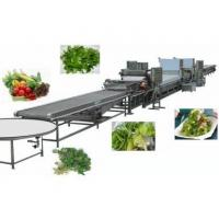 Wholesale Food machine Furit & Vegetable Cleaning Machine from china suppliers