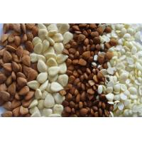 Wholesale Almond/Apricot Kernels from china suppliers