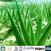 Wholesale Detoxifying  Aloe-emodin from china suppliers