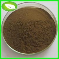 Wholesale Natural Herbal Extract Aloe vera extract from china suppliers