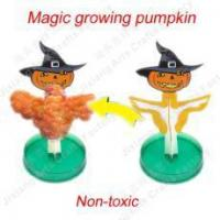 Wholesale Magic growing Pumpkin NO.:SD-112 from china suppliers