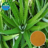 Wholesale Herbal Aloe Extract /Polysaccharide, Aloin, Acemannan from china suppliers