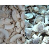 Wholesale IQF dry Mushroom Cut Slice from china suppliers