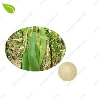 Wholesale White Kidney Bean Extrac >vegetable extract from china suppliers