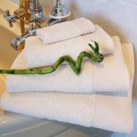 Wholesale Natural Bamboo Fibre Towels from china suppliers