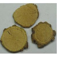 Wholesale Akebia Stem. P.E from china suppliers