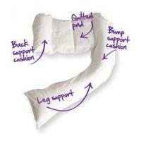 Wholesale dreamgenii Pregnancy Support & Feeding Pillow from china suppliers